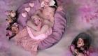 photo nouveau né décor tableau fleuri vieux rose dans panier avec mini cœur