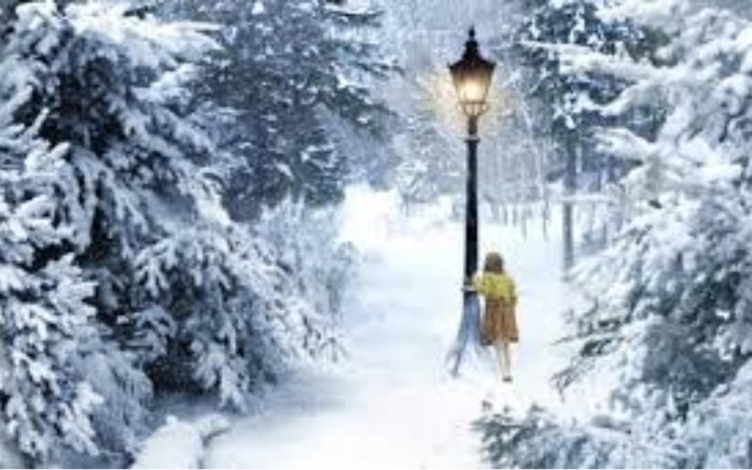 Minis Séances Photo de Noël 2019